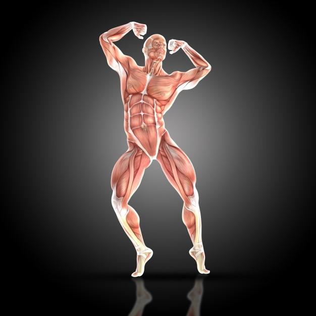muskularny-mężczyzna-stwarzających-z-jego-mięśnie_1048-2638